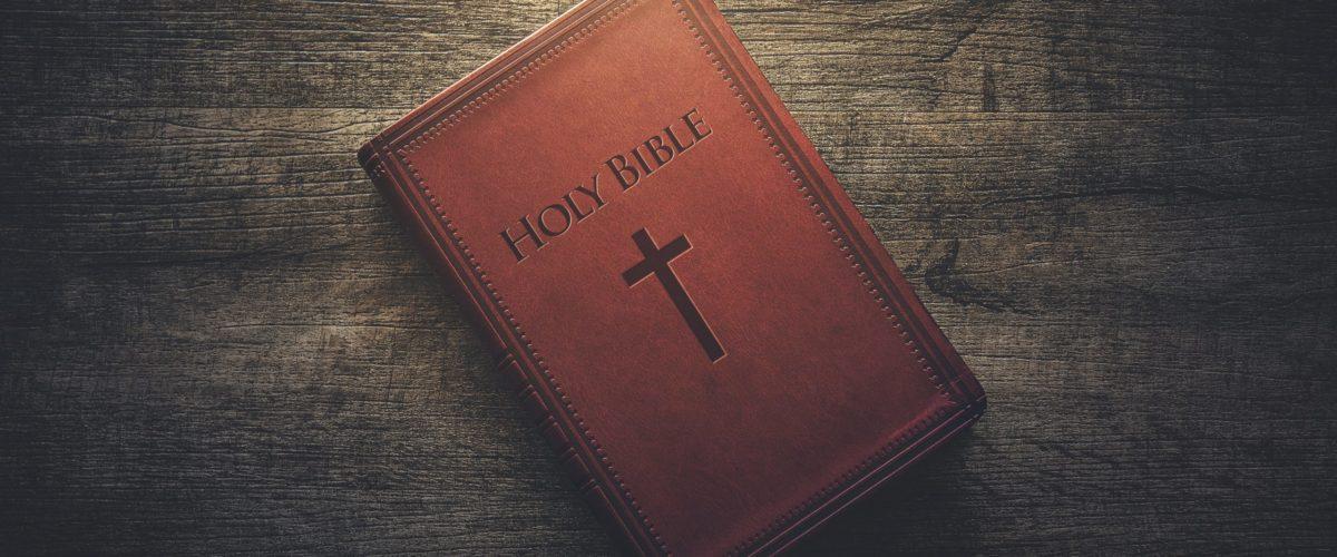 Библия учебник жизни Божьего авторства