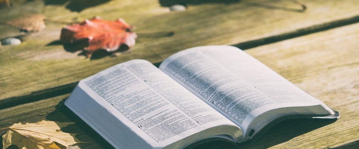 Почему мудрые люди избегают споров