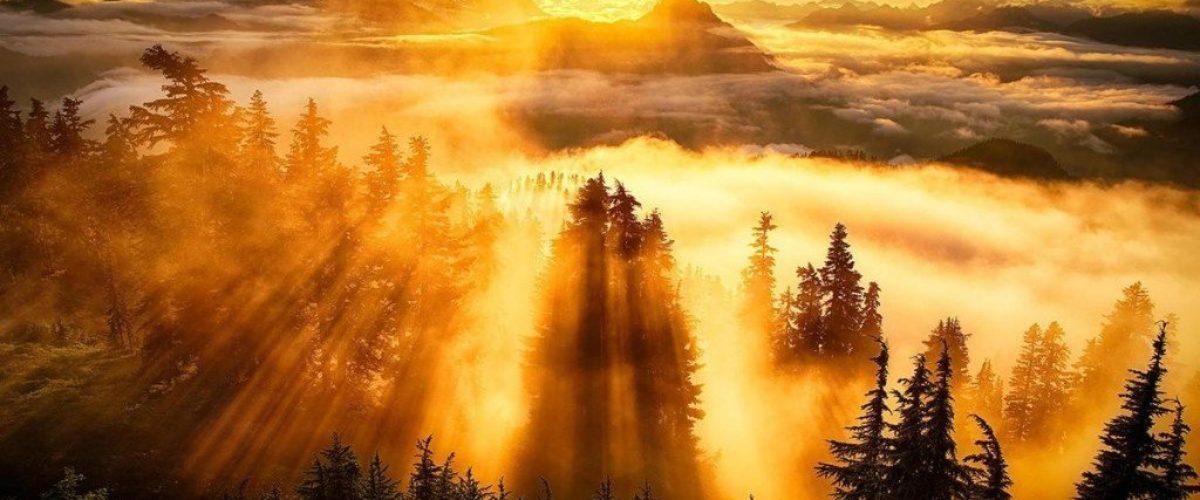 Пусть первый голос будет Его голосом мудрость утренних встреч с Богом