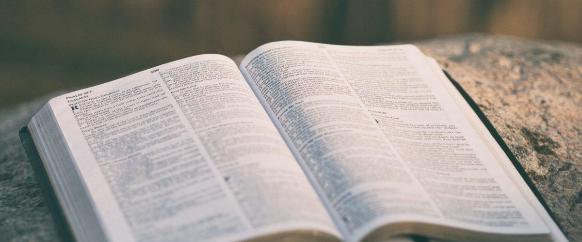 Семь типов поведения глупцов из Книги Притчей